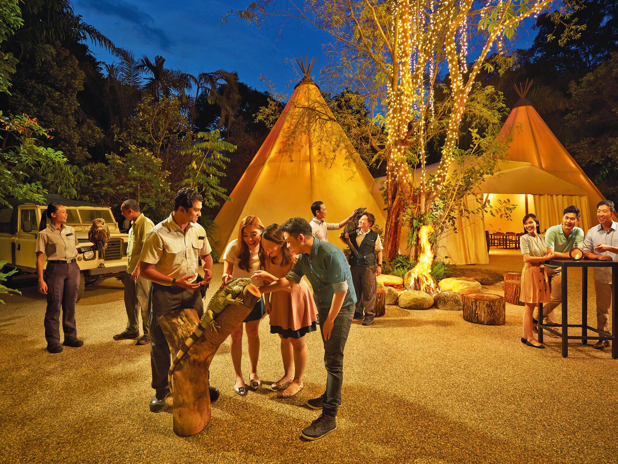 An Evening in the Wild & Gourmet Safari Express in Night Safari